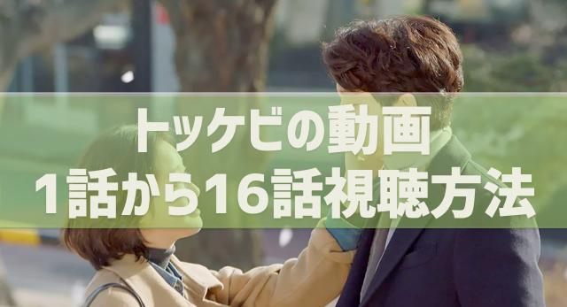 トッケビ(日本語字幕)動画の1話〜16話視聴方法