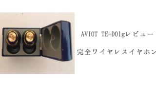 AVIOT TE-D01gレビュー